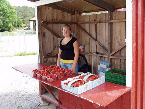 Salg av jordbær